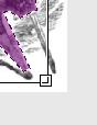 Mit diesem Quadrat können Sie Polygone skalieren.